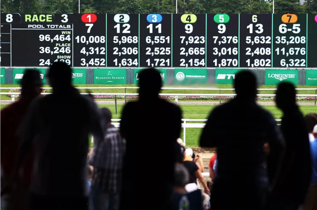 An Explanation on Sports Betting Websites